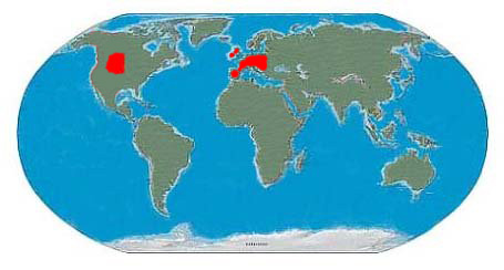 Known Iguanodon Range
