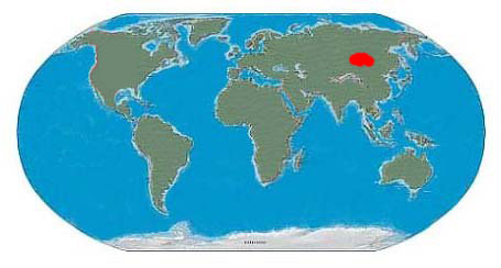 Conchoraptor Fossil Locations