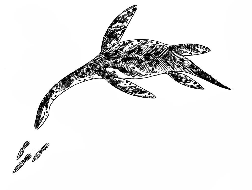 Plesiosaur chasing squid