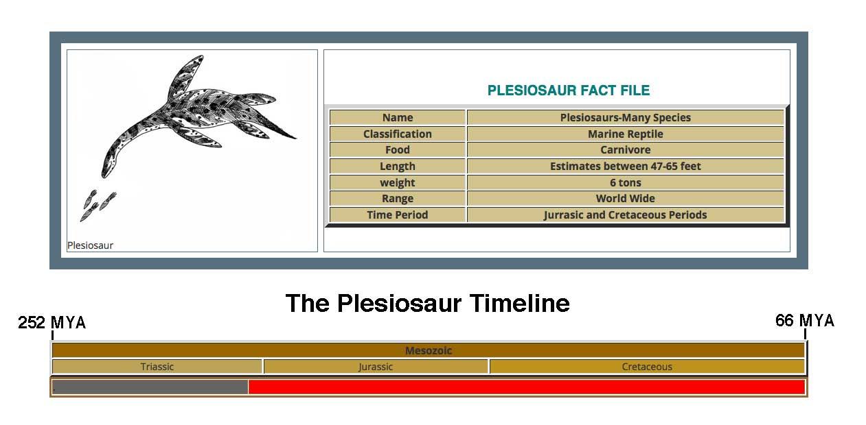 Plesiosaur Fact File