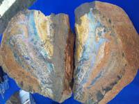 Colorado Gem and Mineral Shows