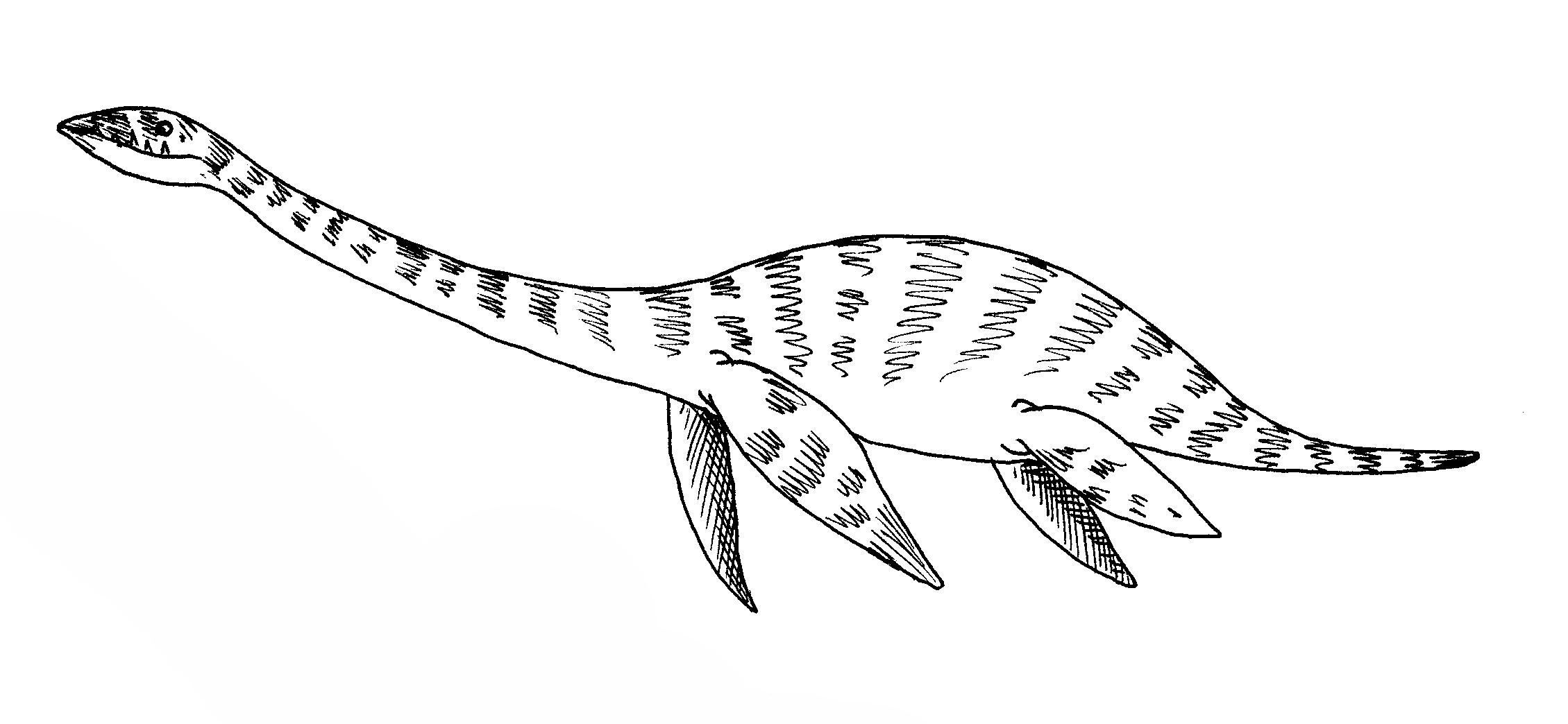 Plesiosaur