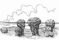 drawing of stromatolites