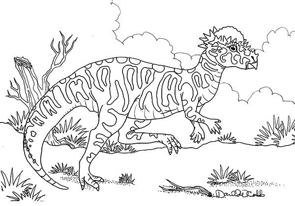 Pachycephalosaurus Drawing