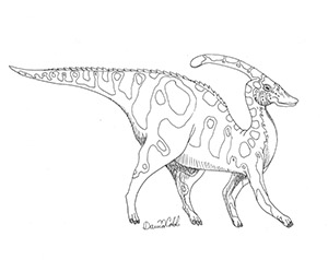 Parasaurolophus Drawing
