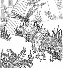 Coloring Pages Of Fossils And Scenes From Various Geologic Time