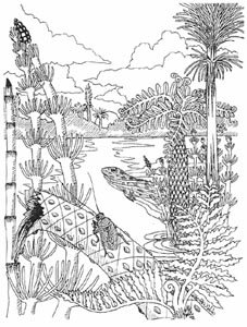 carboniferous period amphibians