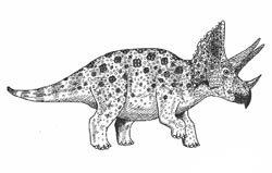 Cretaceous dinosaur triceratops