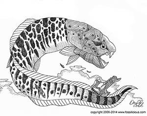 Dunkleosteus Carboniferous Placoderm