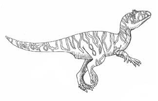 Allosaurus Jurassic Period