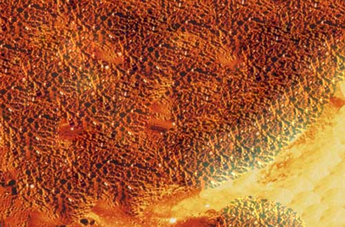 The Molten Surface
