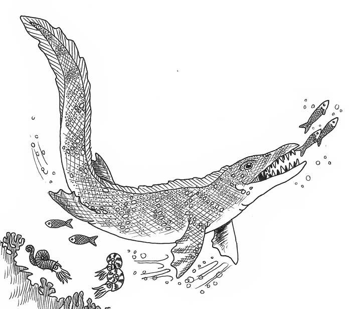 Mosasaur Drawing