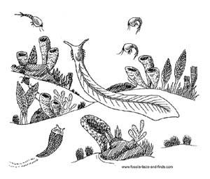 Cambrian Period ocean scene